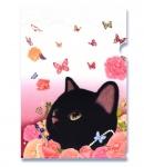 【ワケあり】猫のクリアフォルダー 黒