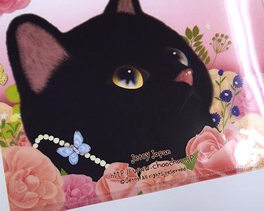 持っているだけでHappyな気分になる<br>そんなクリアフォルダー!<br>黒猫の表情に癒されます♪
