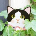 猫のうちわ ver.2 白黒