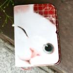 猫のカードケース 白ウインク
