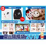 夏の猫福袋2019 サンプル品リュックセット