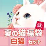 夏の猫福袋 白猫セット