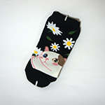 猫の靴下 デイジー
