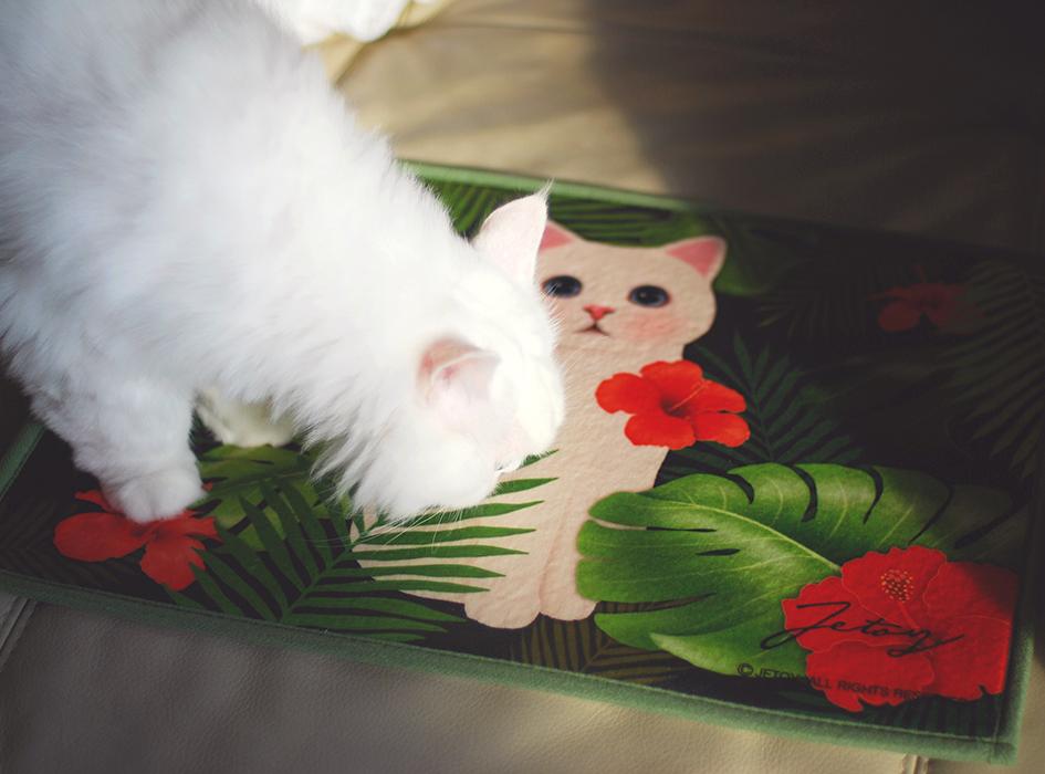 柔らかく、さらっとした触り心地なので<br>愛猫ちゃんも喜んでくれること間違いなし!☆