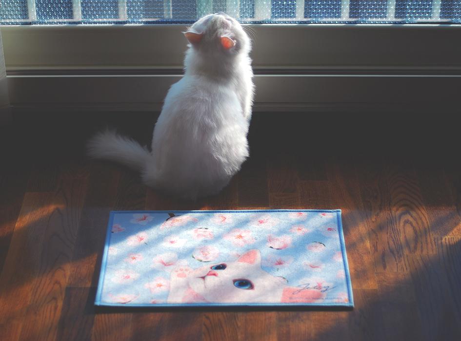 愛猫にも優しい、<br>柔らかい触り心地が特徴です!
