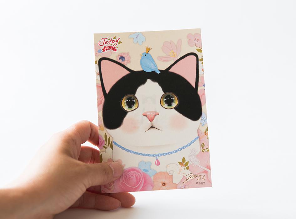 ウルウルとした瞳の白黒猫が<br>とっても愛らしい◎